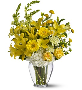 Summer Breeze in Bedford MA, Bedford Florist & Gifts