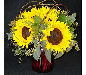 SEND SOME SUNSHINE in Massapequa Park NY, Bayview Florist & Montage  1-800-800-7304