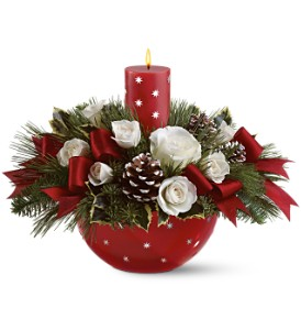 Holiday Star Bowl Bouquet by Teleflora in Frankfort IN, Heather's Flowers