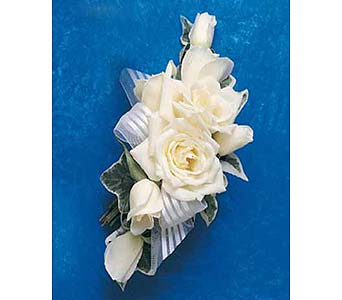 White Spray Rose Wristlet with Variegated Ivy in Albany NY, Emil J. Nagengast Florist