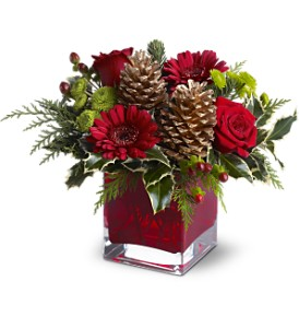 Teleflora's Cozy Christmas in Calgary AB, All Flowers and Gifts