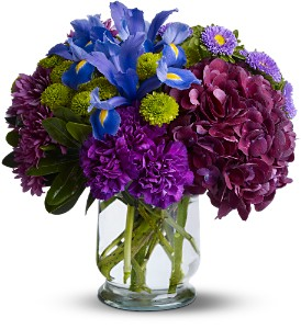 Brilliant Beauty in West Nyack NY, West Nyack Florist