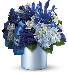Teleflora's Blue Blooms in New Rochelle NY, Flowers By Sutton