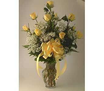 One Dozen Roses Arranged-Yellow in Salisbury MD, Kitty's Flowers