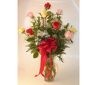 One Dozen Roses Arranged-Assor in Salisbury MD, Kitty's Flowers