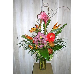 Let's go Tropical in Dallas TX, Petals & Stems Florist