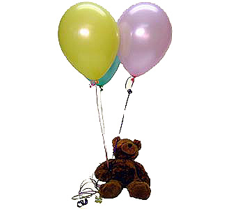 Floating Bear Local and Nationwide Guaranteed Delivery - GoFlorist.com