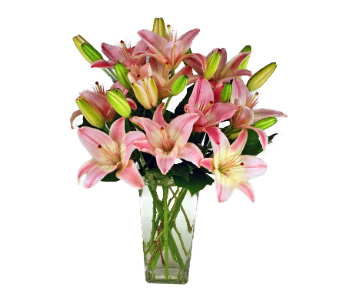 Asiatic Lilies in Indianapolis IN, 317 Flowers