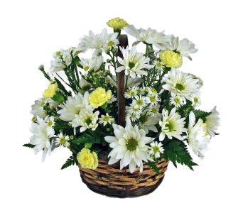 Yellow & White Daisy Basket in Indianapolis IN, 317 Flowers