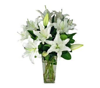 White Stargazer Lilies in Indianapolis IN, 317 Flowers