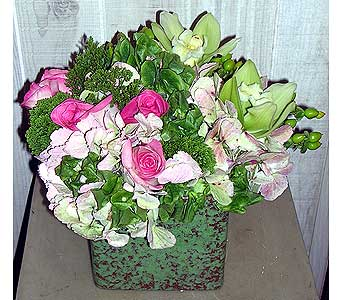 Green Is In in Dallas TX, Petals & Stems Florist