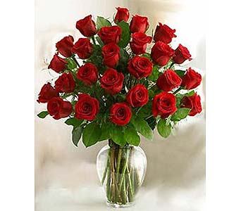Bella Flor Two Dozen Red Roses in Hialeah FL, Bella-Flor-Flowers