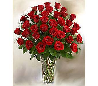 Bella Flor Three Dozen Red Roses in Hialeah FL, Bella-Flor-Flowers