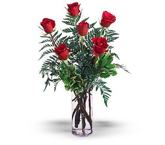 Half Dozen Red Roses in Miami Beach FL, Abbott Florist
