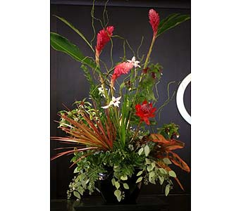 Business in Bellevue WA, Lawrence The Florist