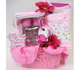 BabyGB51 ''Think Pink'' Baby Girl Gift Basket in Oklahoma City OK, Array of Flowers & Gifts