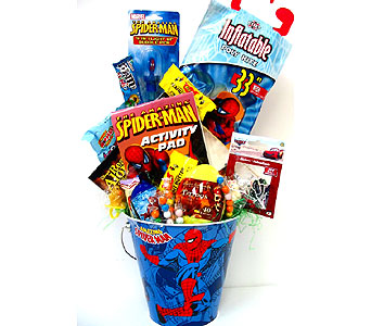 KGB23  ''Spider-Man Activities'' Gift Basket in Oklahoma City OK, Array of Flowers & Gifts