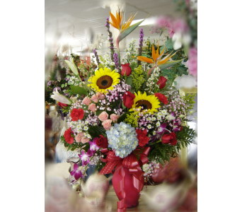Lovely Esplendor in Hialeah FL, Bella-Flor-Flowers