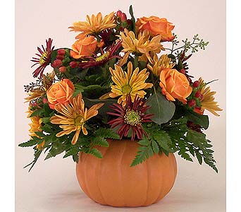 Pumpkin Harvest in Indianapolis IN, Gillespie Florists