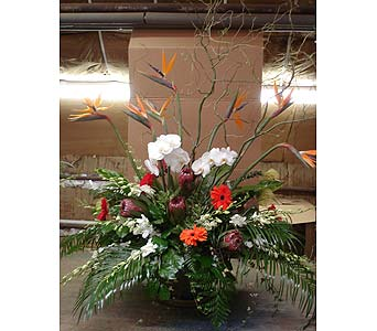 Sympathy in Schenectady NY, Felthousen's Florist & Greenhouse