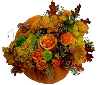 Fresh from the Pumpkin Patch Flower Bouquet in Santa Monica CA, Edelweiss Flower Boutique