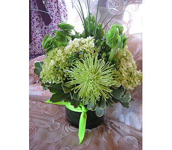 Green Color Therapy in Massapequa Park NY, Bayview Florist & Montage  1-800-800-7304