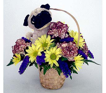 Pug Bouquet in Indianapolis IN, Gillespie Florists