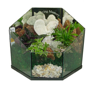 Raimondi''s In Loving Memory Terrarium in Baltimore MD, Raimondi's Flowers & Fruit Baskets