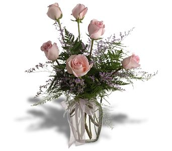 Half Dozen Pink Roses in Redwood City CA, Redwood City Florist