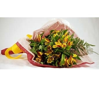 Yellow Alstroemeria Wrap Local and Nationwide Guaranteed Delivery - GoFlorist.com