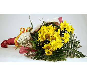 Yellow Daises Local and Nationwide Guaranteed Delivery - GoFlorist.com