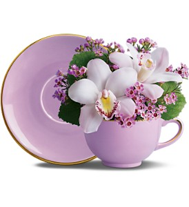 Orchid Teacup Bouquet by Teleflora in Isanti MN, Elaine's Flowers & Gifts