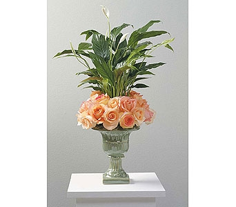 Rose and Peace Lily Urn in Coplay PA, The Garden of Eden