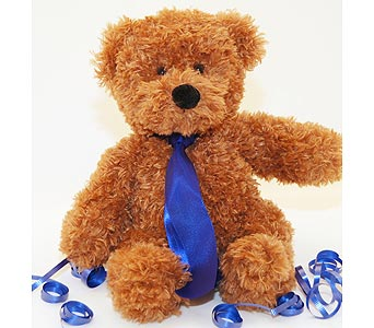 Go Florist Democrat Teddy Bear Local and Nationwide Guaranteed Delivery - GoFlorist.com