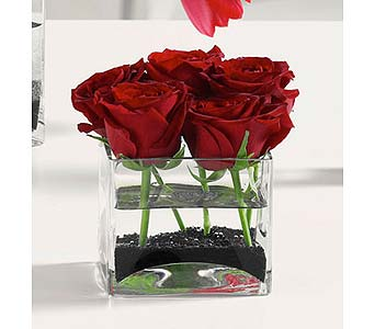 Roses in Glass Cube in Lansing MI, Delta Flowers