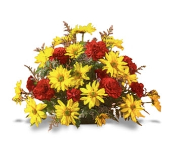 Yellow Daisies & Red Carnation in Rock Island IL, Colman Florist