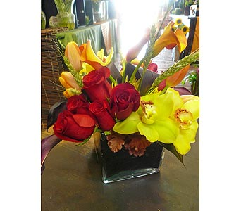 Autumn Breeze in Santa Monica CA, Santa Monica Florist