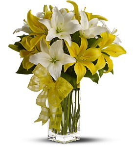 Teleflora's Pick-a-Lily in Friendswood TX, Lary's Florist & Designs LLC