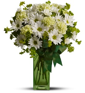 St. Patrick's Day-zies by Teleflora in Baltimore MD, Raimondi's Flowers & Fruit Baskets