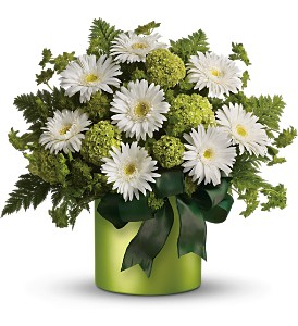 Teleflora's Luck of the Irish in Canisteo NY, B K's Boutique Florist
