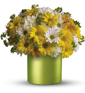 Teleflora's Hello Sunshine in Jamesburg NJ, Sweet William & Thyme