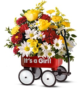 Teleflora's Baby's First Wagon - Girl in Skowhegan ME, Boynton's Greenhouses, Inc.