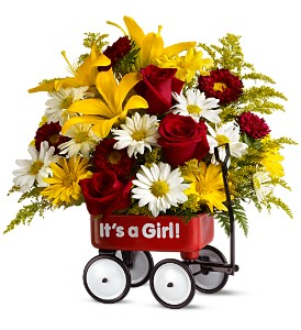 Teleflora's Baby's First Wagon - Girl - Deluxe in Casper WY, Keefe's Flowers