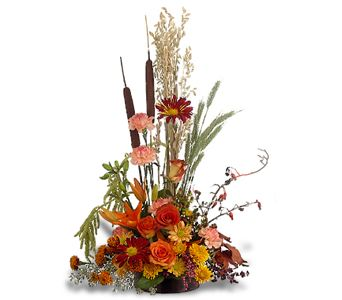 Shades of Autumn in Orange CA, LaBelle Orange Blossom Florist