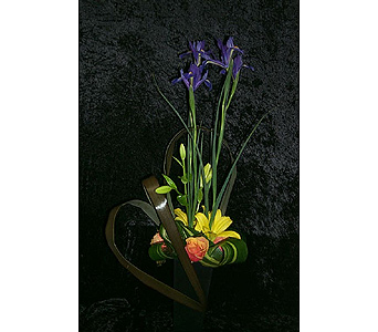 Regal Iris in West Palm Beach FL, Heaven & Earth Floral, Inc.