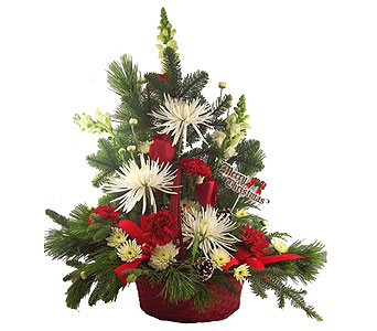 Holiday Greetings Basket in Port St Lucie FL, Flowers By Susan