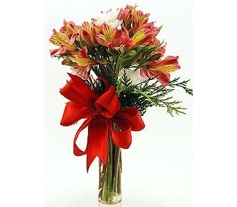 Red Alstroemeria in Clear Glass Bud Vase Local and Nationwide Guaranteed Delivery - GoFlorist.com
