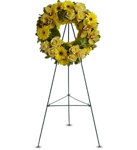 Circle of Sunshine in Princeton, Plainsboro, & Trenton NJ, Monday Morning Flower and Balloon Co.