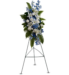 Ocean Breeze Spray in Jersey City NJ, Hudson Florist