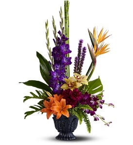 Teleflora's Paradise Blooms in Oklahoma City OK, Array of Flowers & Gifts